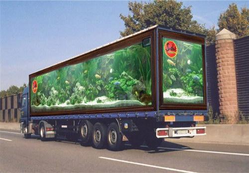 Объемные 3D рисунки на грузовиках